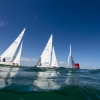 Star Class 8094 and 8179 sailing in Bacardi Miami Sailing Week, day one.