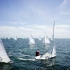 Star Class 8446 and 8320 sailing in Bacardi Miami Sailing Week, day three.