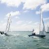 Star Class 846 and 8402 sailing at the Bacardi Cup, Bacardi Miami Sailing Week, day three.