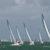 J70 Class sailing at Bacardi Miami Sailing Week, day four.
