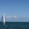 Star Class 8000 sailing at Bacardi Miami Sailing Week, day five.