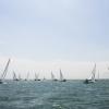 J70 Class sailing at Bacardi Miami Sailing Week, day six.