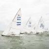 Star Class 8396, 8340, 8275 sailing at Bacardi Miami Sailing Week, day three.