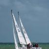 J70 Class 380 and 322 sailing at Bacardi Miami Sailing Week.