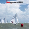 Star Class 8237 sailing in Bacardi Miami Sailing Week.