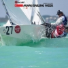 Star Class 8481 sailing in Bacardi Miami Sailing Week.