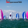 J70 Class sailing in Bacardi Miami Sailing Week.