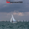Star Class sailing in Bacardi Miami Sailing Week.